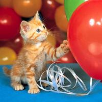 Почему лопаются шарики